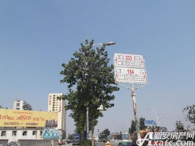 同济自由都市实景图