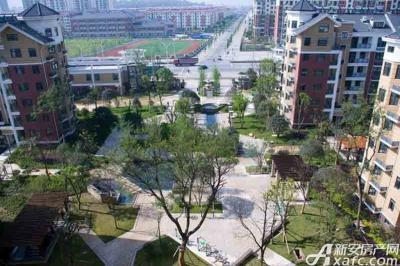 天瑞凤鸣花园项目实景图