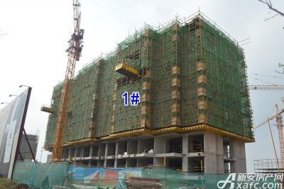 万成·哈佛玫瑰园万成哈佛国际4月项目进度 部分楼栋建至地面6层以上