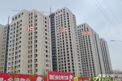 秀山信达城16#14#15#楼工程进度(2016-4-16)