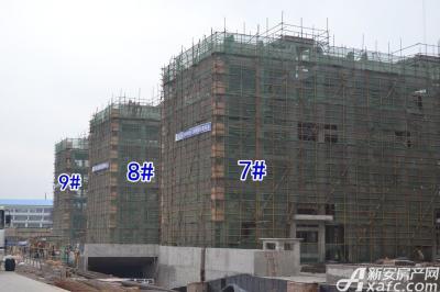 乐泽鑫城华纳橡树湾4月项目进度 7#8#9#楼封顶