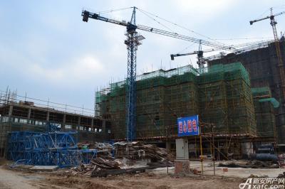 龙登和城龙登和城5月项目进度