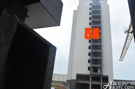文峰鑫苑工程进度