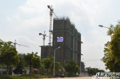 乐泽鑫城华纳橡树湾6月项目进度 高层6#楼建至地上21层