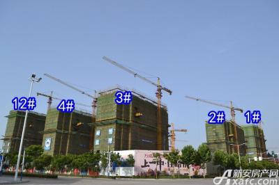 万成·哈佛玫瑰园万成哈佛国际6月项目进度 最高建至地上16层