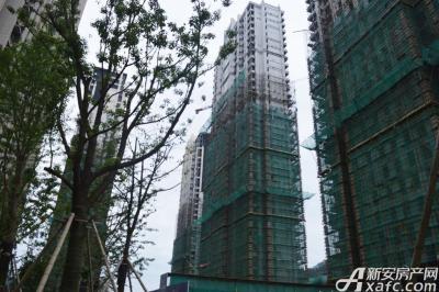 天都首郡天都首郡7月进度 所有在建楼栋绿网拆除中