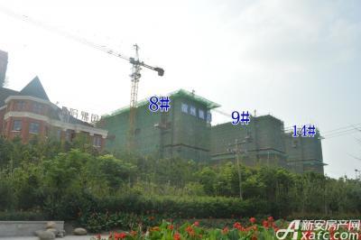 万成·哈佛玫瑰园万成哈佛国际7月项目进度 8#9#14#l楼建制地上6层