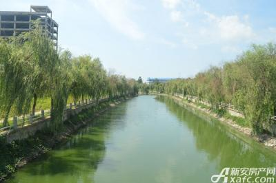 乐泽鑫城华纳橡树湾项目紧邻龙河公园