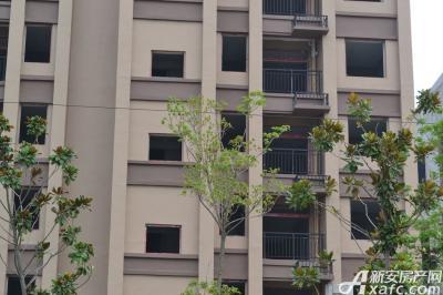 星洲国际城星洲国际城2015年8月进度:住宅准现房呈现