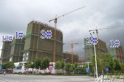万成·哈佛玫瑰园万成哈佛国际8月项目进度 1#楼封顶2#楼建至地上16层