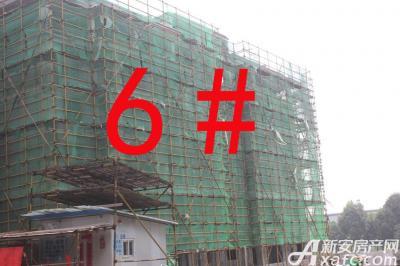 宇业天逸华府6#工程进度:外墙粉刷已完成(2015.8.20)
