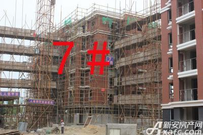 宇业天逸华府7#工程进度:外架即将拆除(2015.8.20)