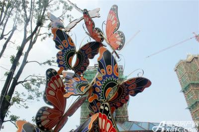 恒大绿洲恒大绿洲售楼中心—蝴蝶翩翩起舞