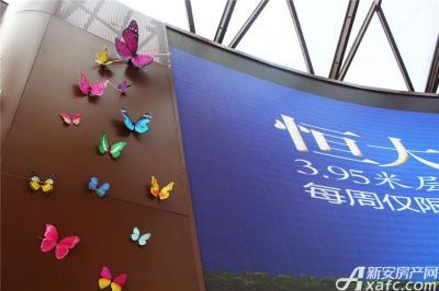 恒大绿洲恒大绿洲售楼中心—墙上的蝴蝶
