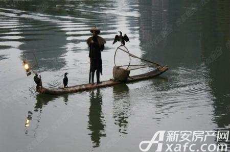 黄山龙湾湖畔创意产业园实景图