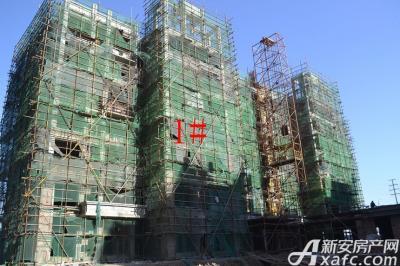 星洲国际城2015年12月:1#楼砌砖至7层