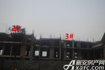 汇峰广场2016年1月份 2#、3#工程进度