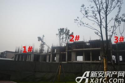 汇峰广场2016年1月份 1#、2#、3#工程进度
