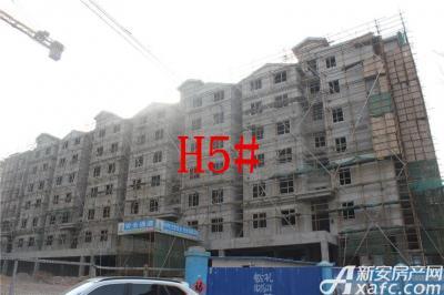 淮北凤凰城2月项目进度:H5#