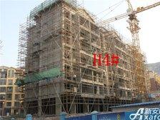 淮北凤凰城2月项目进度:H4#