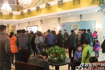 淮北凤凰城绿植义卖20160312
