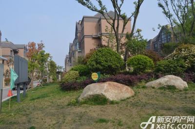 绿地世纪城实景图