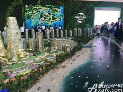 碧桂园森林城市实景图