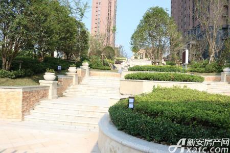 瑞泰中央城实景图
