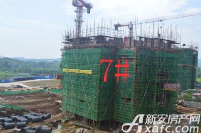金銮御林河畔七号楼 四号楼 项目进度 2016-7
