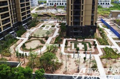 浩创城小区绿化