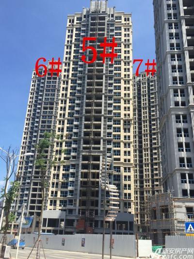 中航长江广场5#、6#、7#楼16年8月进度图(2016.8.11)