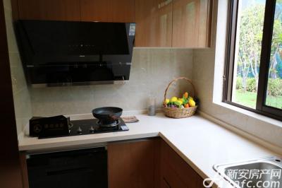 文一豪门金地149㎡户型样板间厨房