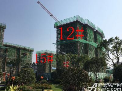 碧桂园·东至首府工程进度