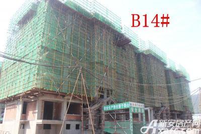 地矿龙山湖苑B14#楼项目进度(2016.9.26)