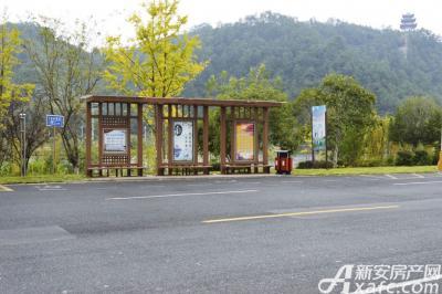 新安印象新安印象前公交站牌(20161017)