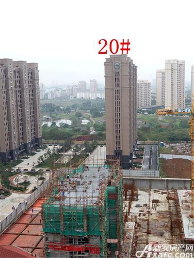 公园道壹号20#楼项目进度(2016.10.18)