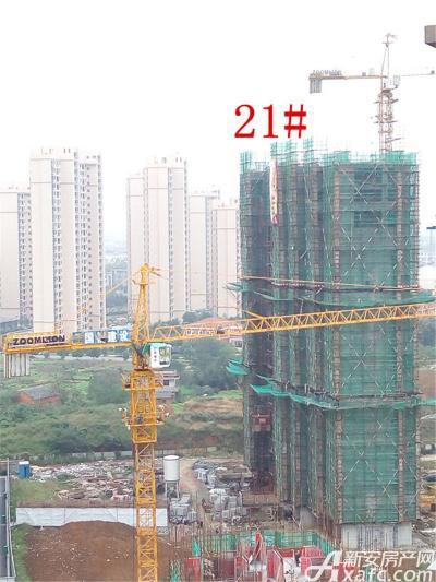 公园道壹号21#楼项目进度(2016.10.18)