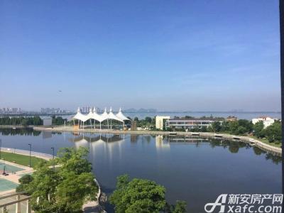 芜湖碧桂园实景图