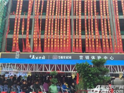 银湖义安学府1#、2#楼开盘(2016.10.29)