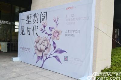 万科时代之光别墅示范区开放(2016.11.12)
