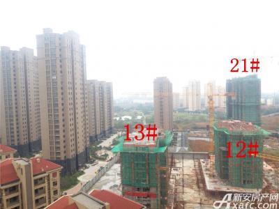 公园道壹号12#、13#、21#楼项目进度(2016.11.14)