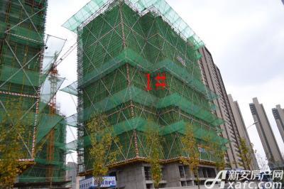 融创城1#楼工程进度(2016.11.09)