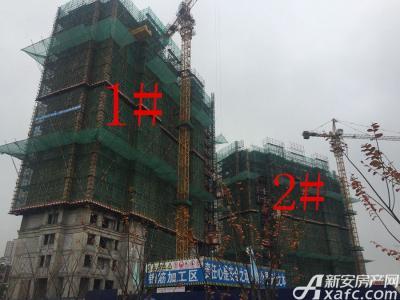 华源七星城1#、2#楼11月份项目进度图(2016.11.22)