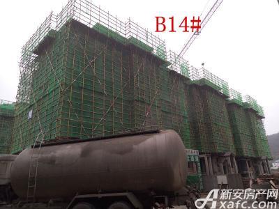 地矿龙山湖苑B14#楼项目进度(2016.11.23)