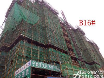 地矿龙山湖苑B16#楼项目进度(2016.11.23)