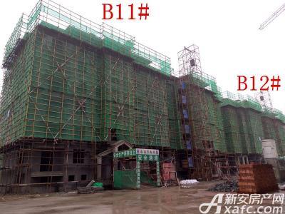 地矿龙山湖苑B11#、B12#楼项目进度(2016.11.23)