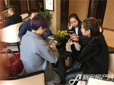 金鹏玲珑湾东院样板间开放(2016.11.12)