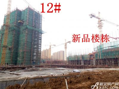 公园道壹号12#楼及新品楼栋项目进度(2016.12.13)