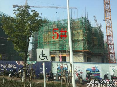 华源七星城5#楼17年1月份进度图(2017.1.18)