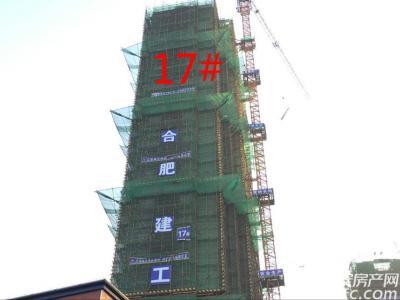 秀山信达城17#工程进度(2017.1.14)